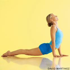 Basic Hatha Yoga and pranayama course notes anyone? Upward_dog